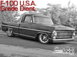 Ford_F100_Frente_com_Gringa_USA_Grade_1967_Americana